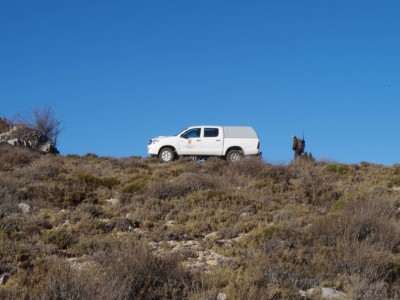 Groud transfer during hunts at Caza Hispanica