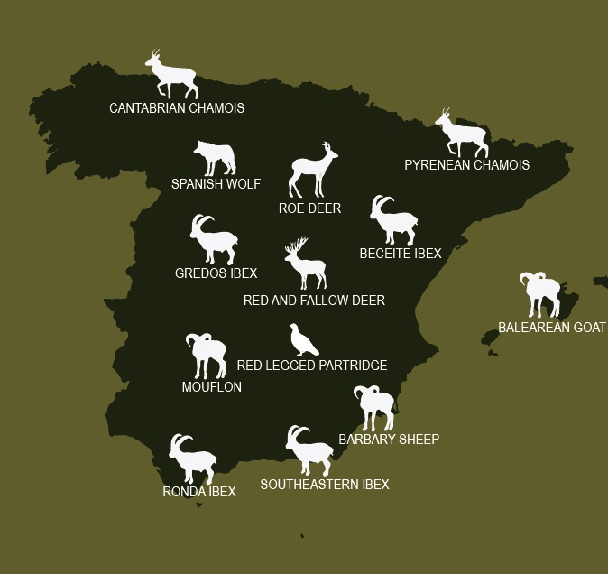 Map hunting species in Spain