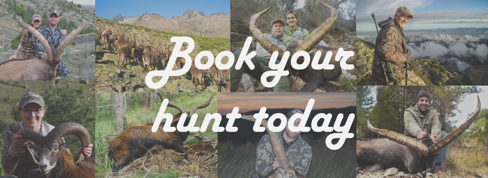 Book-your-hunt-wallpaper
