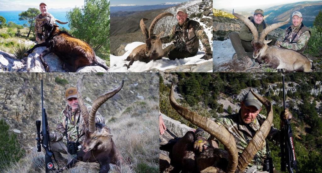 Spanish Ibex, Caza Hispanica Outfitter