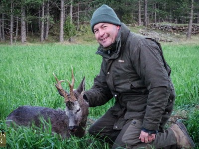 Hunting the roe buck in Spain