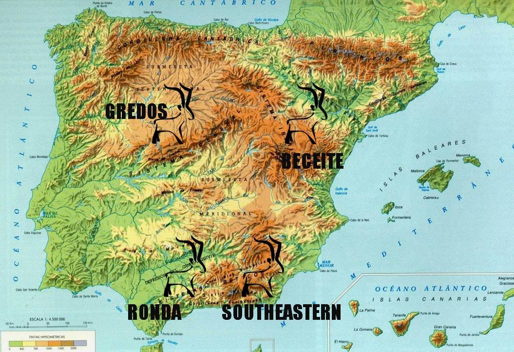 Spanish Ibex GRAN SLAM