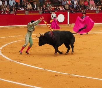 Spanish Ibex and Balearean goat hunt