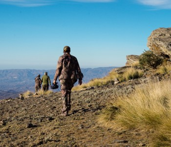Hunting the Southeastern Ibex