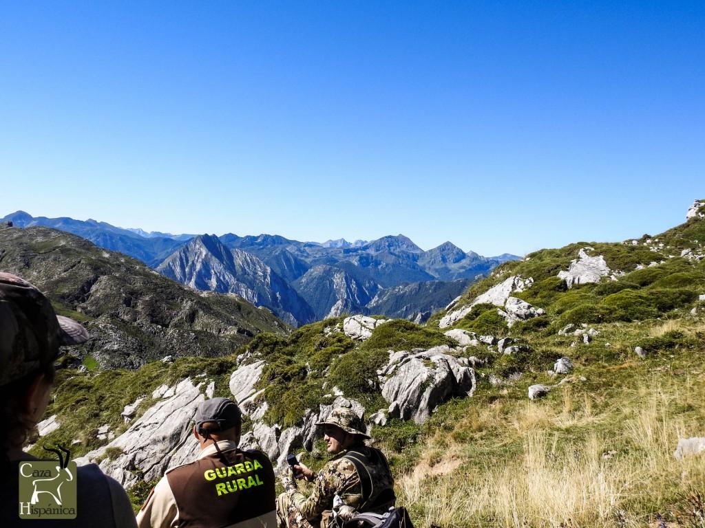 Chamois hunting terrain